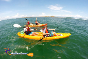 uvita-tree-sixty-kayak-costa-rica-kayak-surf-snorkel-sup-kayak-adventure-osa-ballena-surfing-mangrove-tour